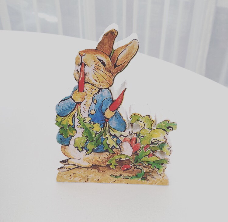 Peter Rabbit baby shower - wooden block