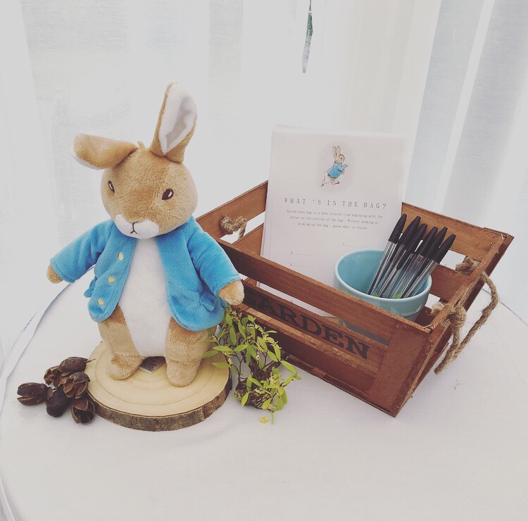 Peter Rabbit baby shower game - What's in the bag game