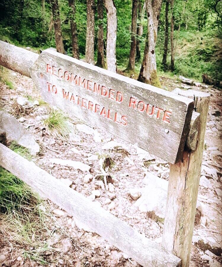 Four Falls Walk sign