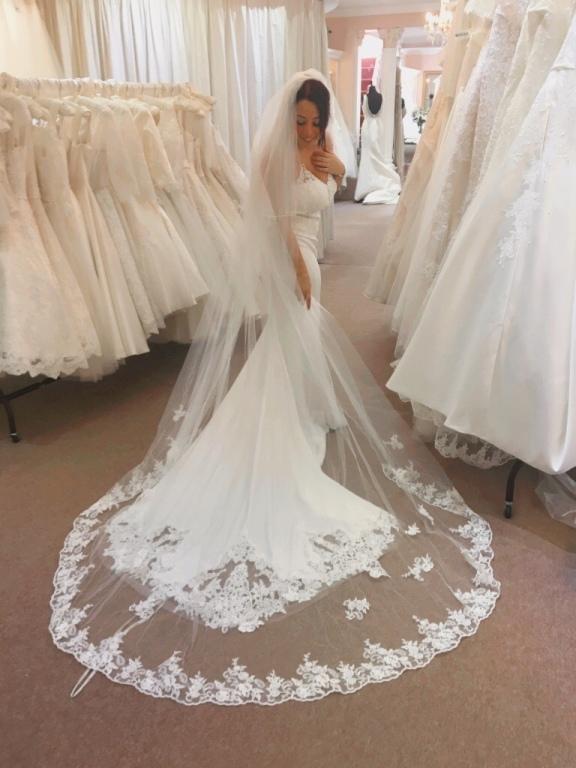 Long Wedding Dress and Veil